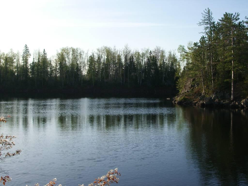 trout lake near ely mn