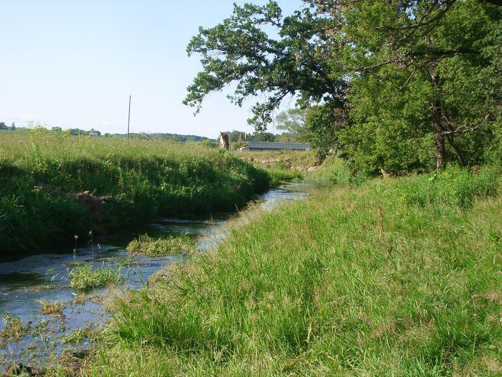 Driftless Area spring creek fly fishing