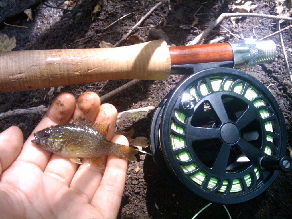 greenie with rod