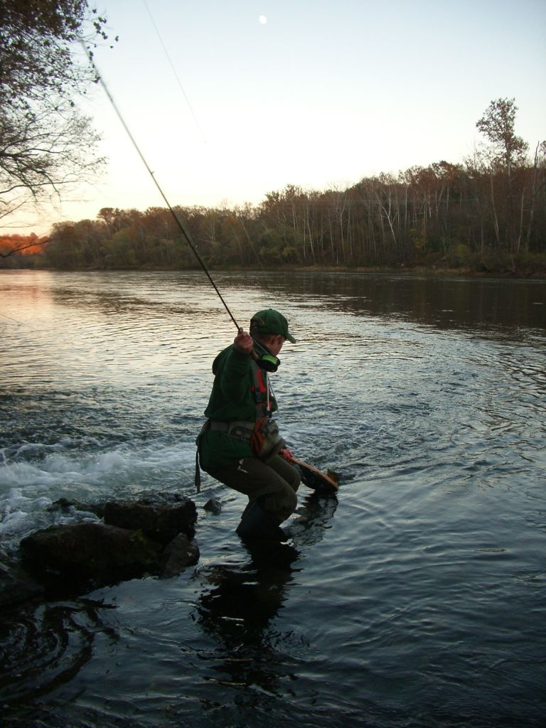 putting a nice Lake Taneycomo brown trout in the net