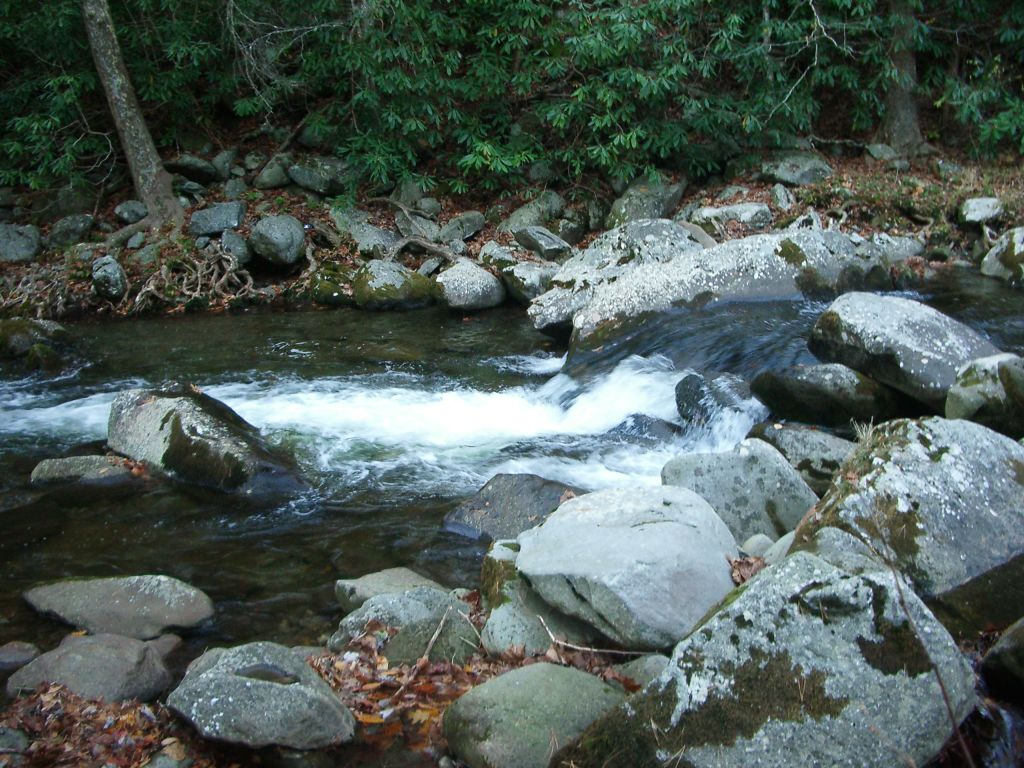 Plunge Pool On A Medium Size Smokies Stream