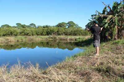 Gills and gators florida farm pond fishin 3 brothers for Fish farms in florida