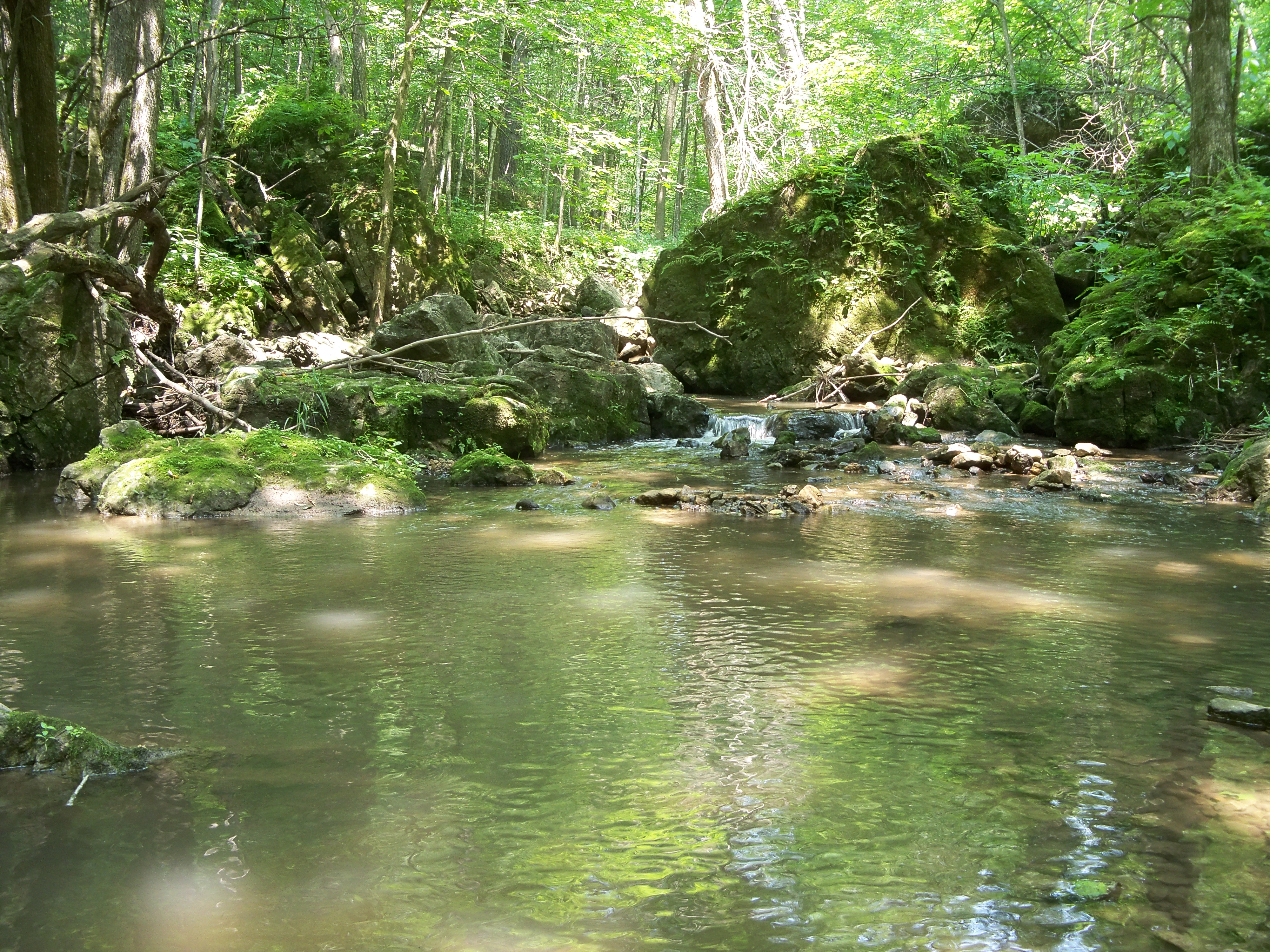 """Rugged country in the Driftless """"backcountry"""""""