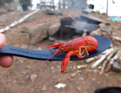 Poor man's lobster