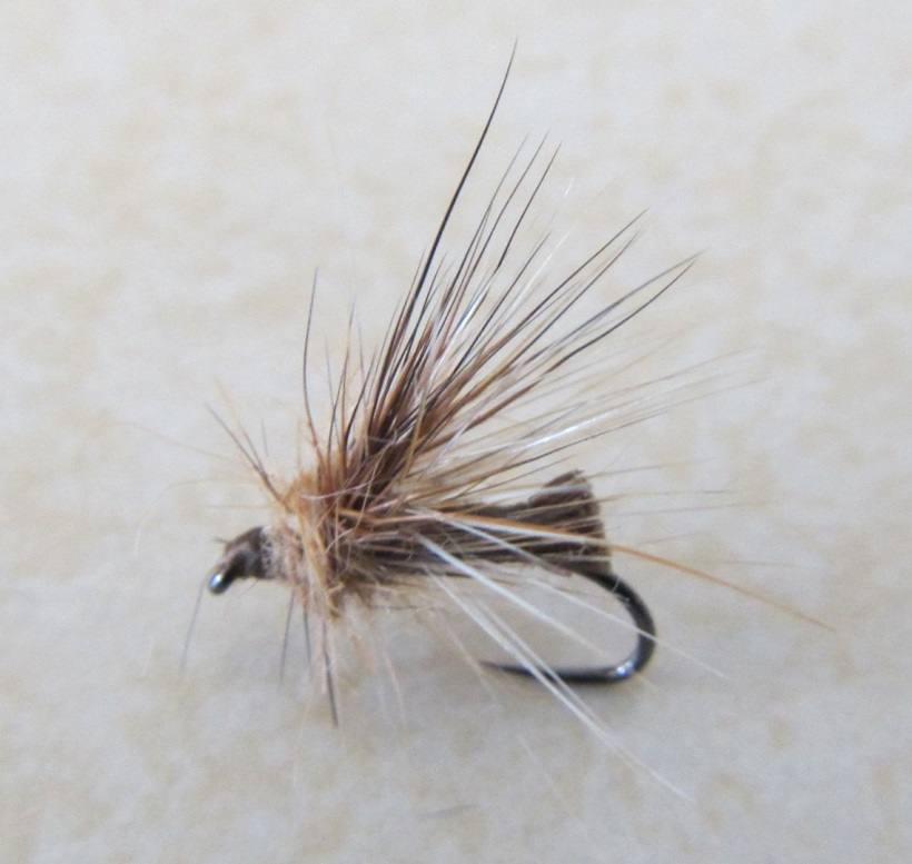 Coulee Crusader Caddis - fly and pic by Spirit Streams Fly Fishing