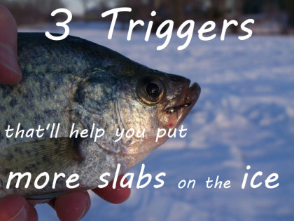 http://blog.fishinggear.com/blog/2014/03/31/selecting-lures-for-panfish-and-trout-under-the-ice-3-triggers-thatll-help-you-put-more-slabs-on-the-ice/