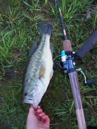 The obligatory picture of the first largemouth of the season.