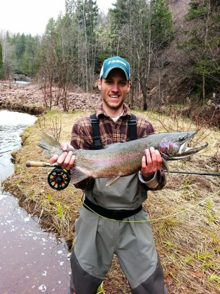 big steelhead