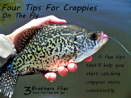 Fly fishing tips for crappies